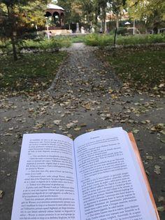 🍂 Autumn