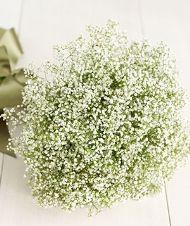 DIY Wedding Flowers - Martha Stewart move over!