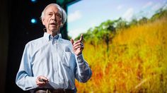 This is AMAZING and has the potential to change the world. PLEASE WATCH - Allan Savory: How to green the desert and reverse climate change via TED