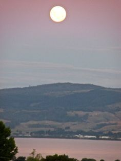 ロトルア湖上の満月(さざんか亭からの眺め)