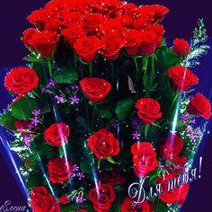 Анимированное фото Good Morning Flowers Pictures, Good Morning Beautiful Pictures, I Love You Pictures, Beautiful Flowers Pictures, Beautiful Bouquet Of Flowers, Beautiful Gif, Types Of Flowers, Flower Pictures, Beautiful Roses
