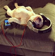 getting some zzzzssss while listening to tunes