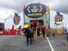 Entrada decorada al evento 29 Gran Premio Nacional Mobil Delvac.