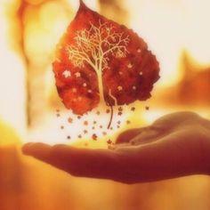 Red Leaf by DeepKeep on SoundCloud
