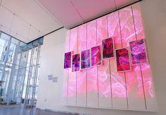 The Brain Index – Columbia University Zuckerman Institute — AV&C Interactive Installation, Installation Art, Interactive Design, Architectural Scale, Information Design, Digital Signage, Experiential, Software Development, Digital Media