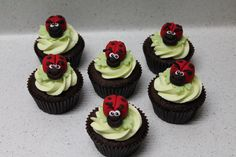 Ladybird cupcakes for SPCA cupcake day