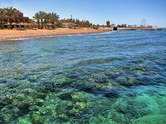 Berenice Beach, Aqaba, Jordan (2)