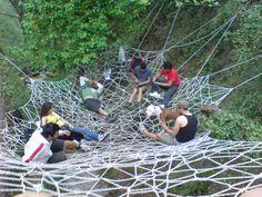 Greece forest Spider net, Human class ;)