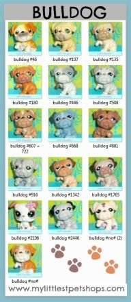 Littlest Pet Shop List – Bulldog Puppy Dog.  Learn all the pet numbers for all the bulldogs that hasbro toys sells.  Many more pet shops lists available at http://mylittlestpetshops.com.  Repin if BULLDOGS are one of your favorites!