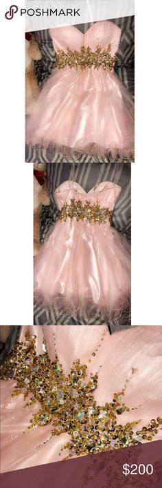 Pink and gold dress Only worn once for my sweet 16 pink and gold dress. Super well taken care of no flaws. Everything is perfect. Can be worn for prom, formal, etc.. Dresses Prom