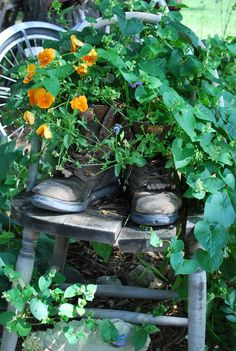When shoes have worn out, put a plant in them.
