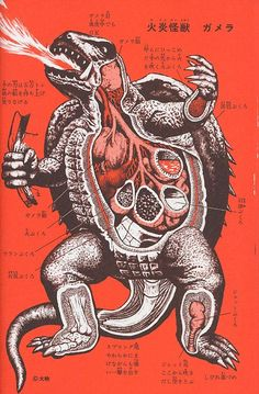 Flaming Monster Gamera, An Anatomical Guide to Monsters.