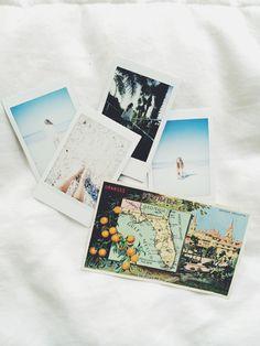 FL photo diary