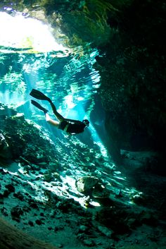 Sodwana Bay Cave Free diving  (www.adventuredivingsafaris.co.za)