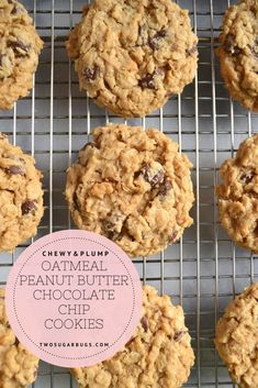 You want this easy cookie recipe in your kitchen! These cookies are undeniably plump and loaded with oats, peanut butter and chocolate chips. I dare you to eat just one! Peanut Butter Sandwich Cookies, Chocolate Chip Shortbread Cookies, Peanut Butter Roll, Toffee Cookies, Peanut Butter Cookie Recipe, Chocolate Chip Oatmeal, Chocolate Peanut Butter, Chocolate Chips, Peanut Cookies