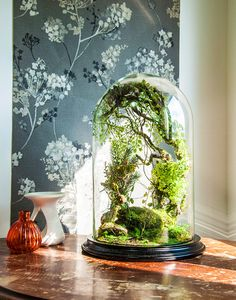 Forest terrarium of artificial plants, Cabinet of curiosity, dome Bell glass, anniversary gift wedding, Christmas decoration by VERTplusSAUVAGE on Etsy https://www.etsy.com/listing/478500017/forest-terrarium-of-artificial-plants