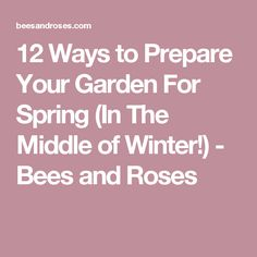 12 Ways to Prepare Your Garden For Spring (In The Middle of Winter!) - Bees and Roses