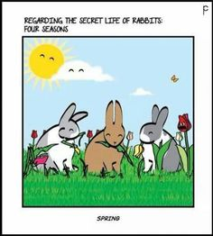 The Secret Life of Rabbits: Spring Happiness Baby Animals, Animals And Pets, Cute Animals, Funny Animals, Funny Bunnies, Baby Bunnies, Rabbit Art, Bunny Rabbit, Secret Life Of Rabbits