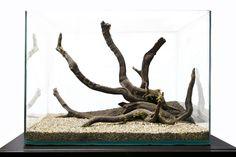simple hardscape aquariums - Google Search