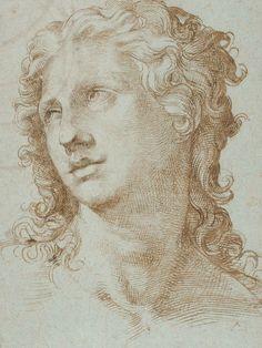 Bartolomeo Passarotti, Italian 1529–1592, Head of a figure (Testa di una figura), 1560–70, pen and brown ink on blue paper, 33.7 x 26.0 cm, ...