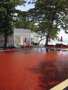 #TheLibrary hotel's blood red pool #KohSamui #Thailand