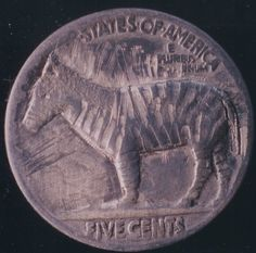 John Dorusa - Old Bo (Reverse is this Zebra) 2 Sided Carving Hobo Nickel, Buffalo, Classic Style, Carving, Wood Carvings, Sculptures, Printmaking, Water Buffalo, Wood Carving
