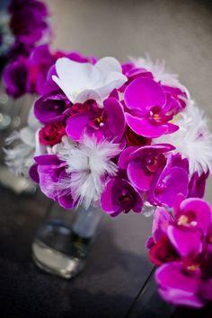 Orchids :)