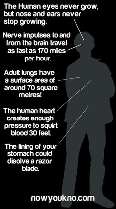 Interesting Facts about our body