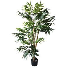 Romano 5-foot Indoor/ Outdoor Tropical Palm Tree