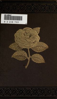Practical camellia culture : - Biodiversity Heritage Library