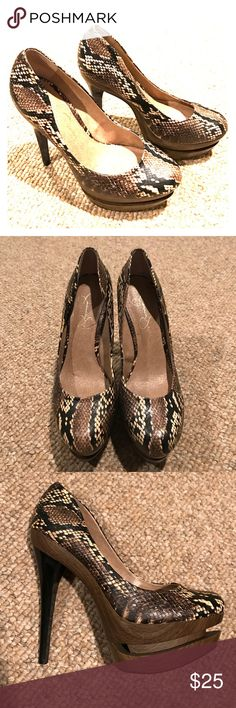 Jessica Simpson Size 7 Heels Jessica Simpson Snakeskin Stiletto size 7 . Worn only once. Very high heel! Jessica Simpson Shoes Heels