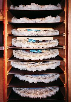 Tutu storage!   Portfolio: Behind the Curtain at the New York City Ballet - The Cut.  Photo Henry Leutwyler
