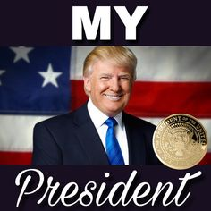 People try to say that he is not their president but thats just stupid to say beacuse if you live in America he is your president