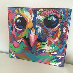 Colorful owl hama perler art by nanahelstrup