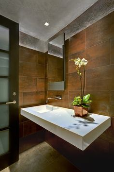 Tucson Residence Contemporary Powder Room - Modern Furniture, Home Designs & Decoration Ideas