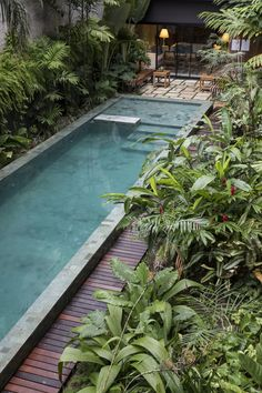 Small Pool Designs for Backyard Everybody desires to have a beautiful swimming pool at home, and they all appreciate visiting swimming pools elsewhere as Small Backyard Design, Small Backyard Pools, Backyard Pool Designs, Small Pools, Small Pool Ideas, Tropical Garden Design, Backyard Layout, Small Courtyard Gardens, Small Courtyards
