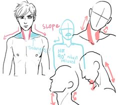 http://anatomicalart.tumblr.com/post/114500942149/any-advice-on-necks-they-are-my-nemesis