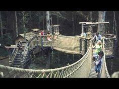 Swinging Bridge Adventure in Gatlinburg & Pigeon Forge TN