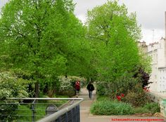 Promenade Plantee Paris runners
