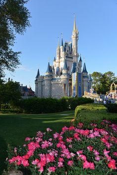 Disneyland, Orlando by AZ Imaging, via Flickr