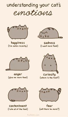 Cat emotions with pusheen