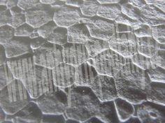 EPS polystyren