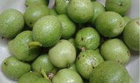Gyógyszer a zöld dióból készült likőr! Készítsd el Te is! - Egészségtér - Természetes egészség Lime, Tea, Fruit, Drinks, Drinking, Limes, Beverages, Drink, Teas