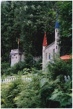 Enchanted Forest in Revelstoke, BC.  Been here several times and it's got to be one of my favourite places ever!