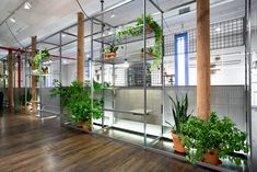 ALU - News: A Breath of Fresh Air in the ALU NY Showroom