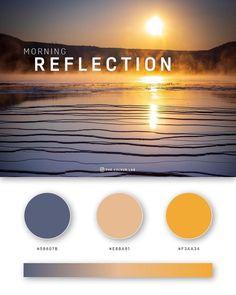 Gold Color Palettes, Colour Pallette, Color Palate, Colour Schemes, Couleur Html, Bg Design, Hex Color Codes, Color Swatches, Gradient Color