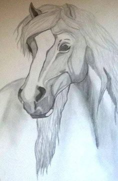 horse drawing, black and white