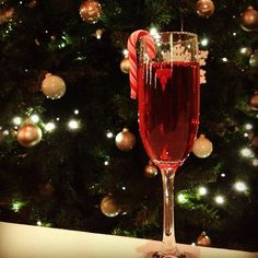 Our yummy Christmas candy cane cocktail! Cocktails, Alcoholic Drinks, Hotel Spa, Christmas Candy, Candy Cane, Castle, Photo And Video, Rose, Instagram