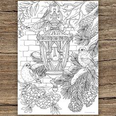 Printable adult coloring pages - Lantern Printable Adult Coloring Page from Favoreads (Coloring book pages for adults, Coloring sheets, Coloring designs) Free Adult Coloring, Adult Coloring Book Pages, Printable Adult Coloring Pages, Flower Coloring Pages, Coloring Pages To Print, Mandala Coloring, Free Coloring Pages, Coloring Sheets, Coloring Books