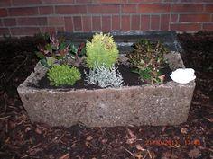 New Beton giessen Gro er Pflanztrog aus Hypertufa mit Perlite Blumenerde und Zement YouTube